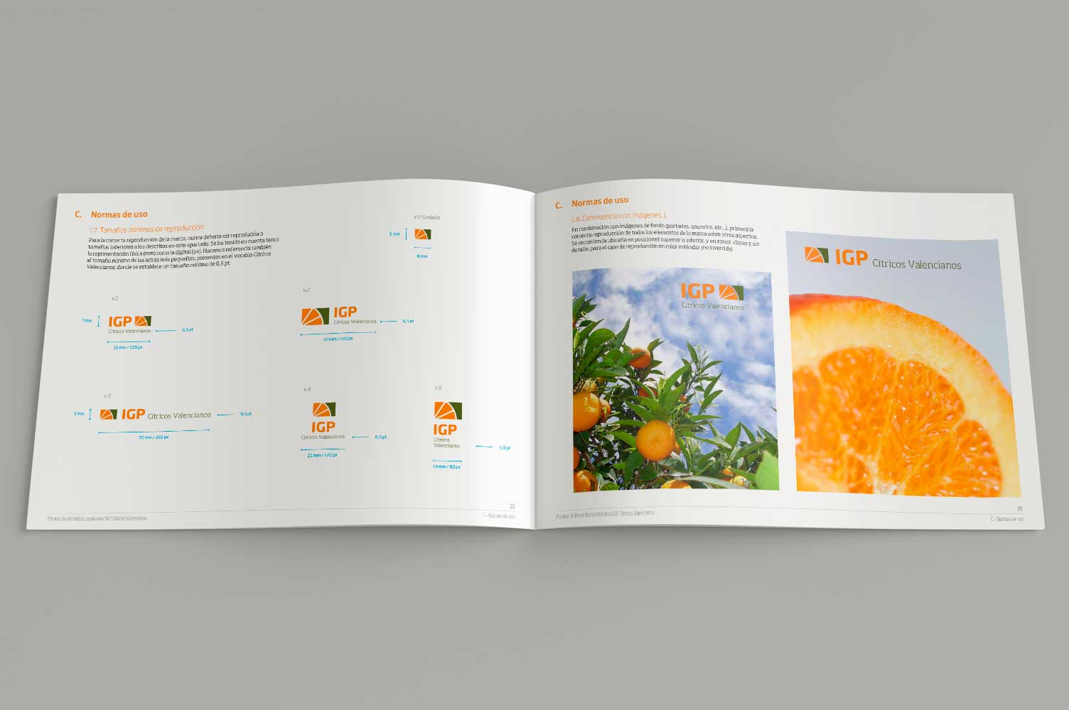 Diseño interiores manual de identidad corporativa IGP