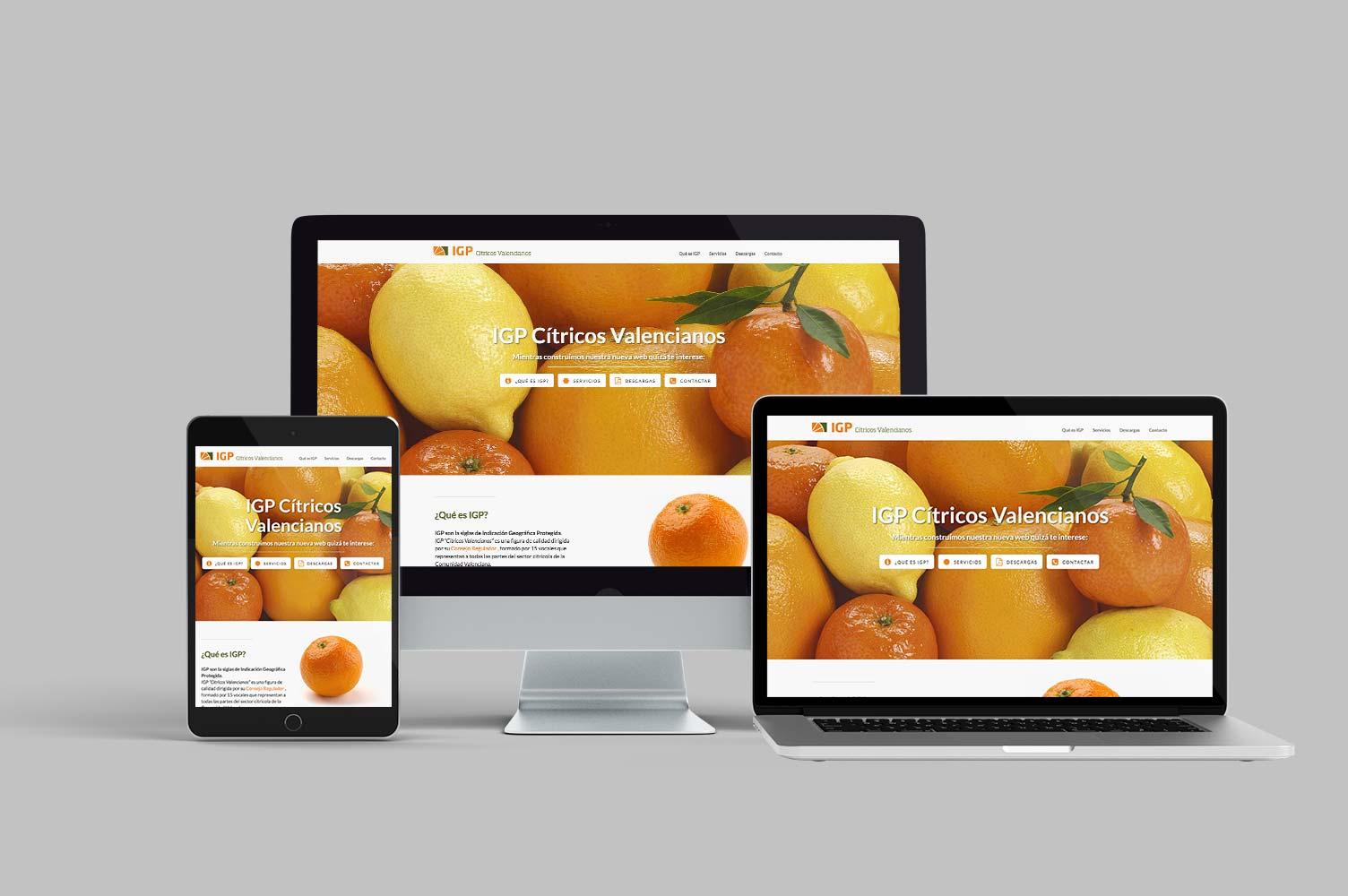 Diseño web responsive IGP Cítricos Valencianos
