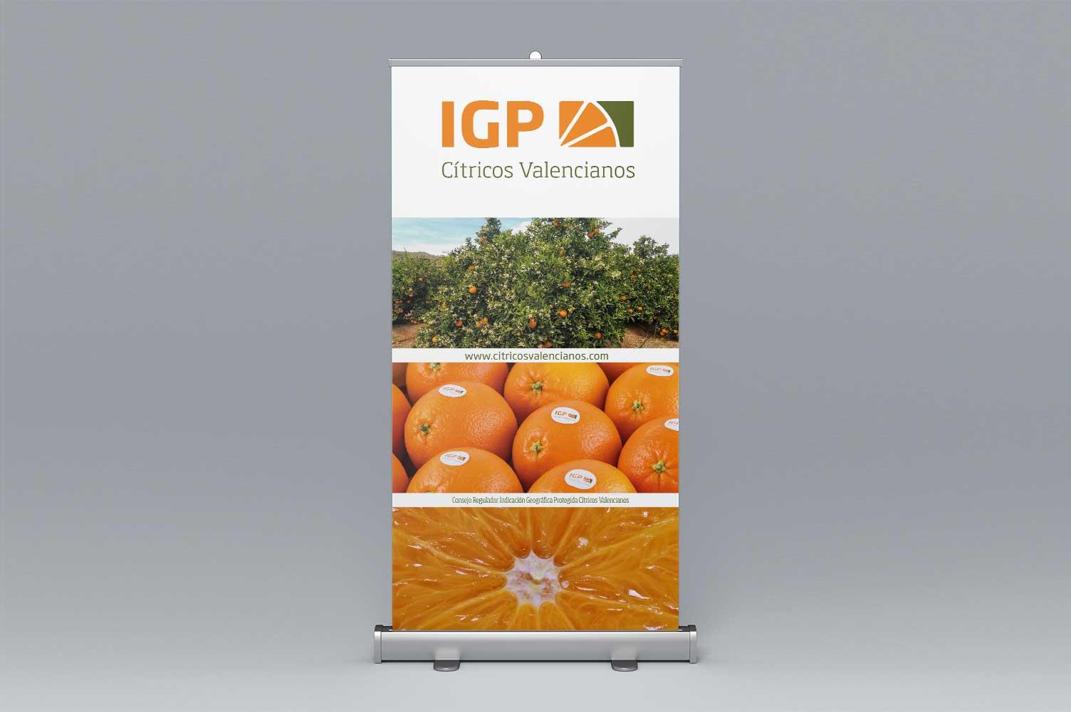 Rollup corporativo IGP