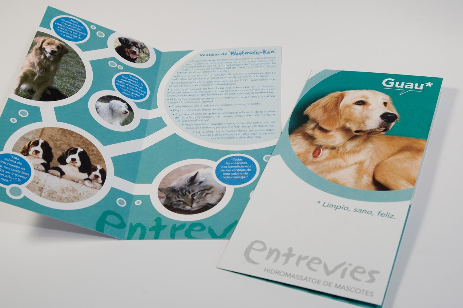 Publicidad lavado de mascotas
